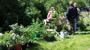 Trädgårdshandel